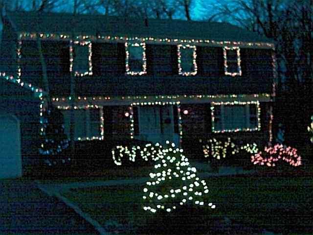 Christmas Bush Lights.Christmas Lights 2001